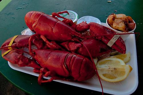 lobster_festival.jpg