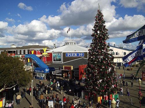pier_39_christmas_tree.jpg