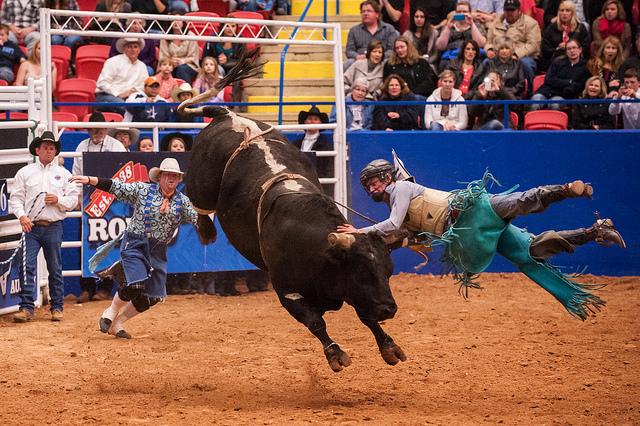 autin-rodeo.jpg