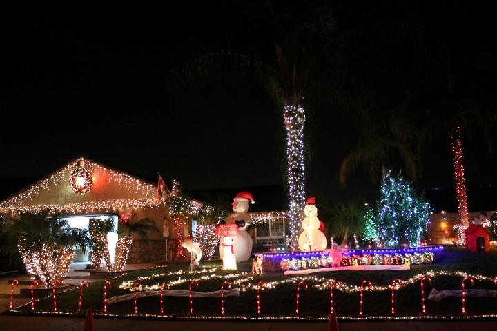 chino-christmas-light1.JPG