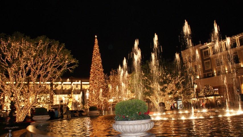 americana_christmas_tree_012.JPG