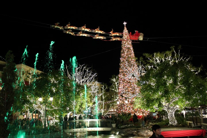 the_grove_christmas_tree_13.JPG
