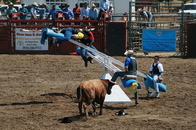 cowboyday.jpg