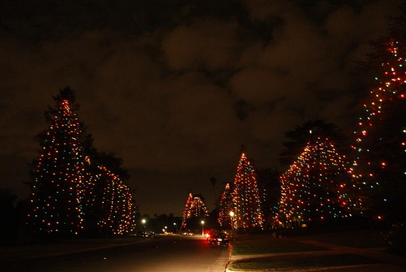 Christmas_tree_lane_san_marino_01.JPG