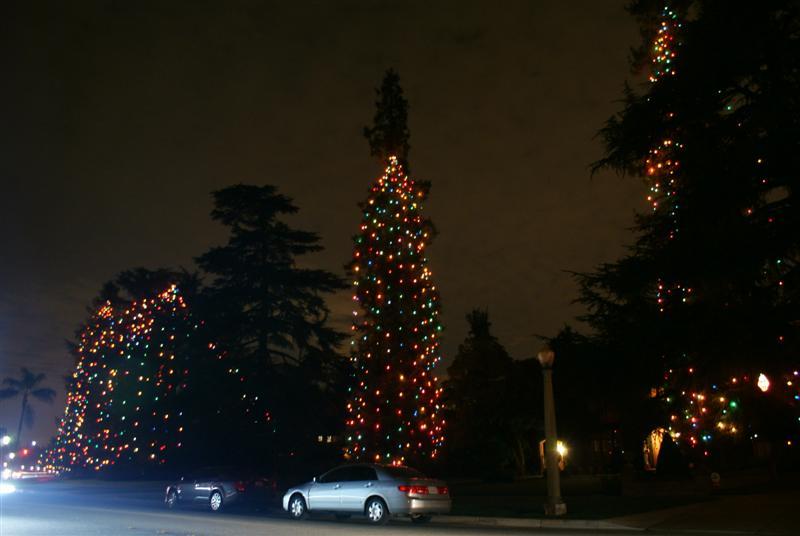 Christmas_tree_lane_san_marino_09.JPG