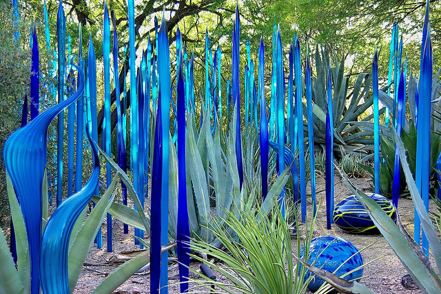 desert-botanical-garden.jpg