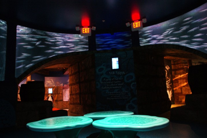 sealife_arizona3.JPG