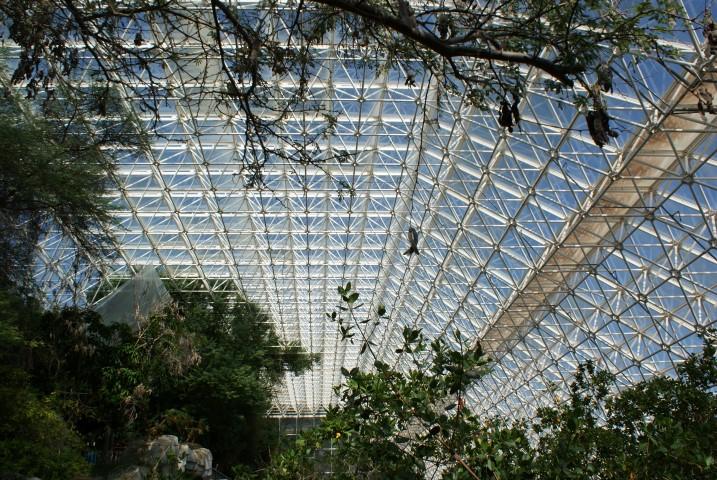 biosphere22.JPG