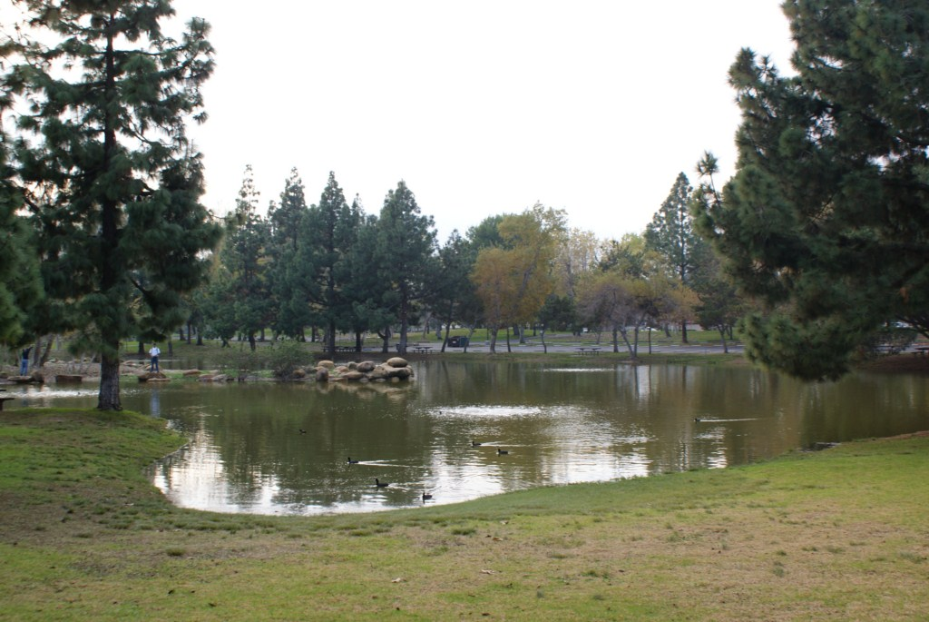 yorba_regional_park.JPG