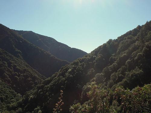 arcadia-wilderness-park.jpg