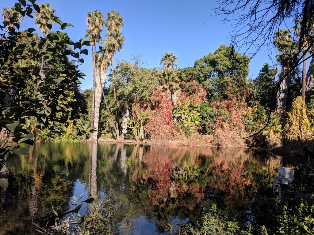 arboretum14.jpg