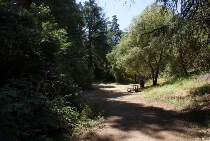 franklin-canyon-park2.JPG