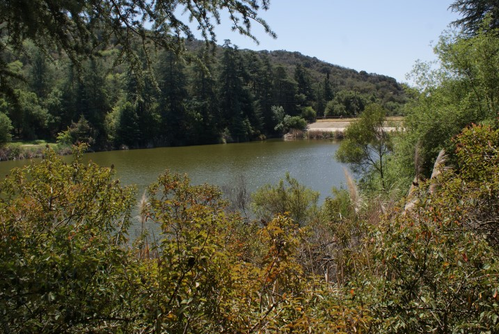 franklin-canyon-park3.JPG