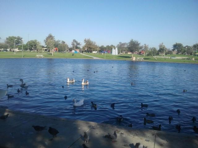 Cerritos-Regional-Park2.jpg