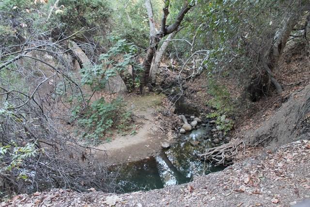sycamore-canyon2.jpg