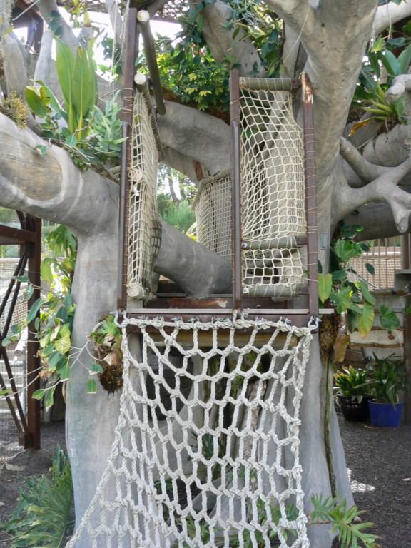 san_diego_botanc_garden_8.JPG