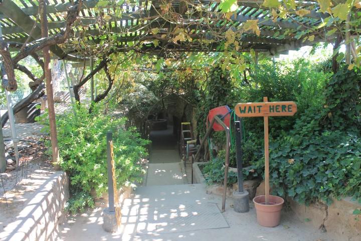 underground-garden3.JPG