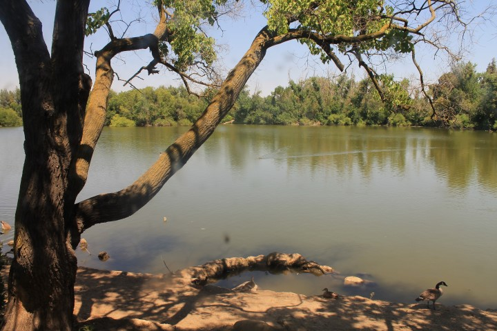 woodward-regional-park.JPG