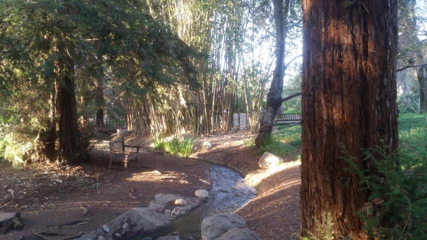 fullerton-arboretum-06.jpg