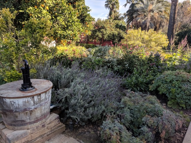 fullerton-arboretum-10.jpg