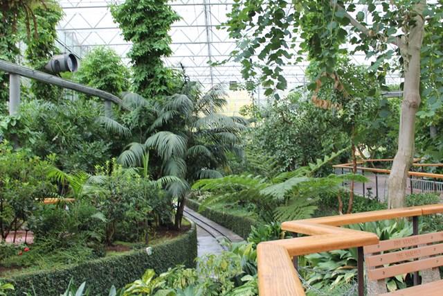 gilroy-garden40.jpg