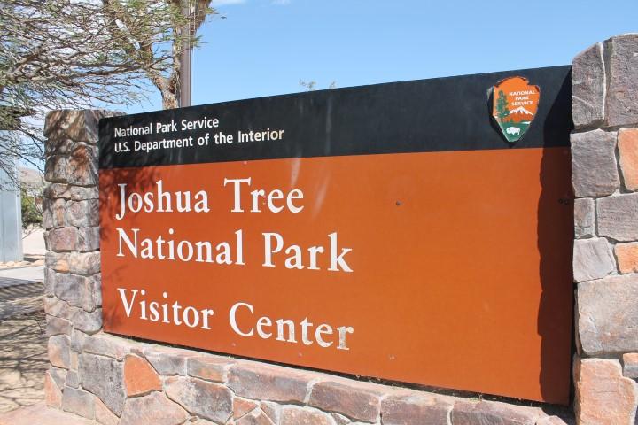 joshua-tree-17.JPG