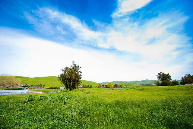 Bodegas-Aguirre-Winery.jpg