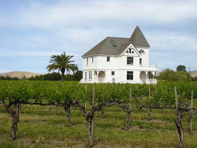 Concannon-Vineyard.jpg