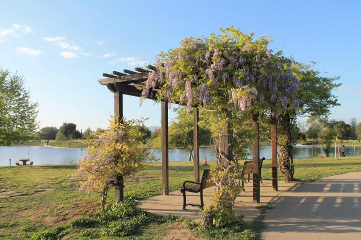 Lake-Balboa-Park-4.JPG