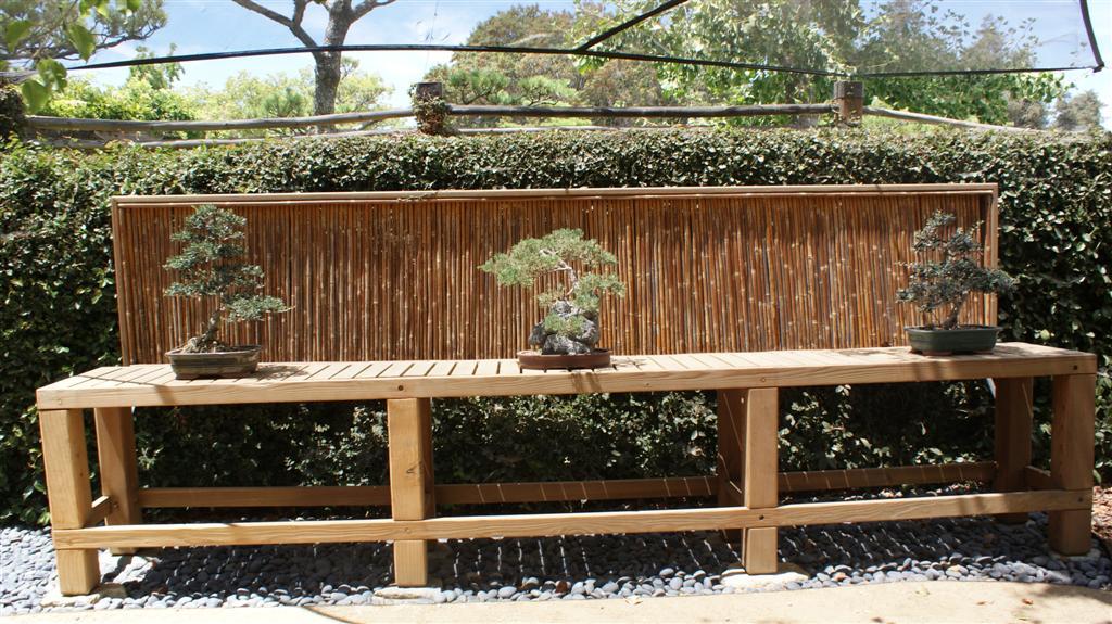 Japanese_Garden_19.JPG
