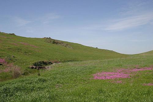 santa-rosa-plateau1.jpg