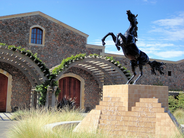 Black-Stallion-Winery.jpg
