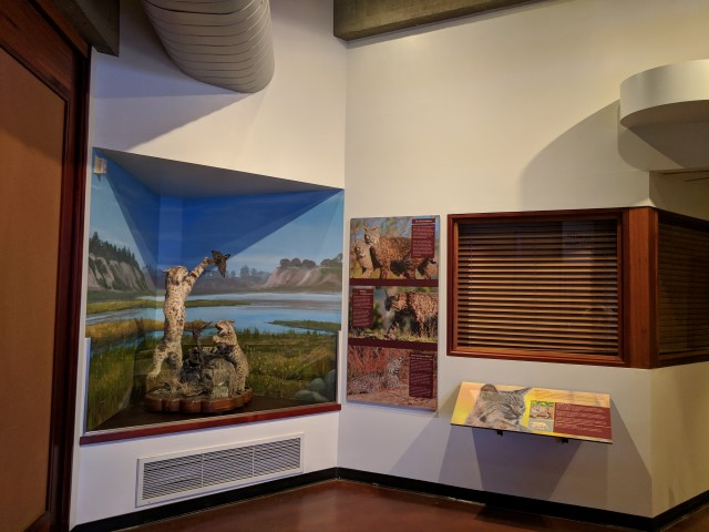 MuthInterpretiveCenter06.jpg