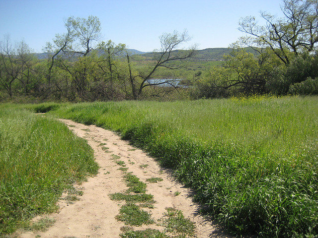 Peters-Canyon-Regional-Park.jpg