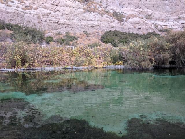 whitewater-preserve07.jpg