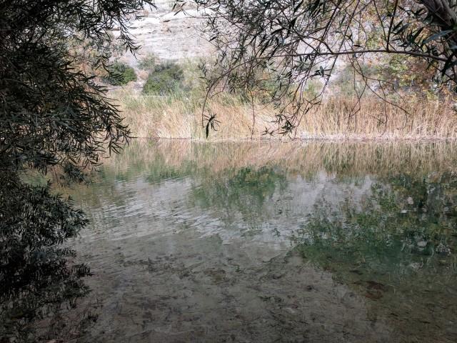 whitewater-preserve16.jpg