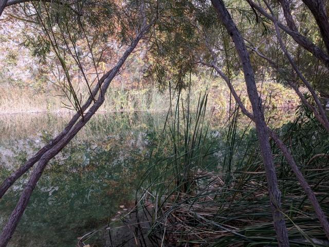 whitewater-preserve17.jpg