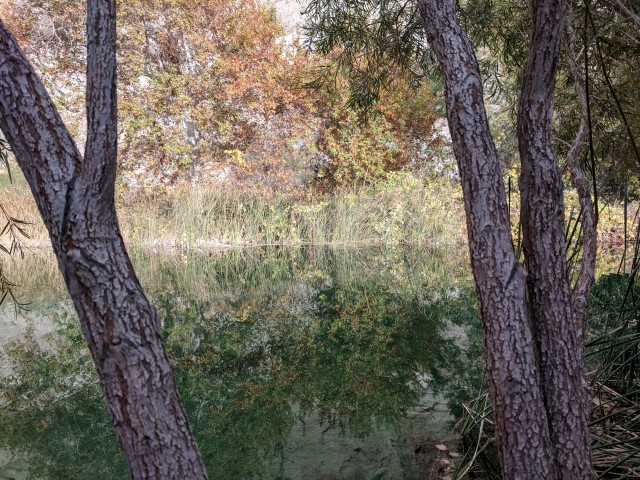 whitewater-preserve18.jpg