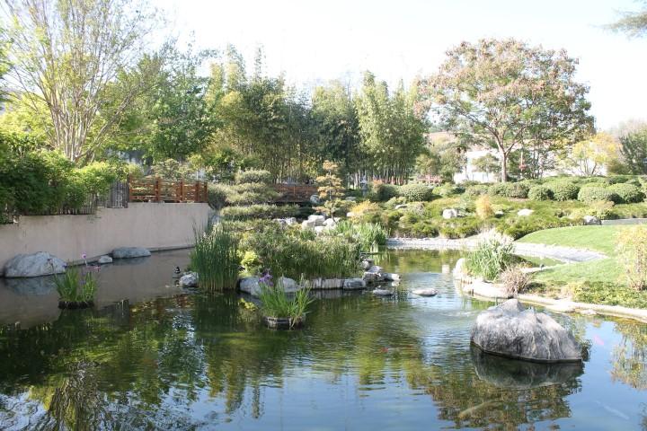 japanese-garden3.JPG