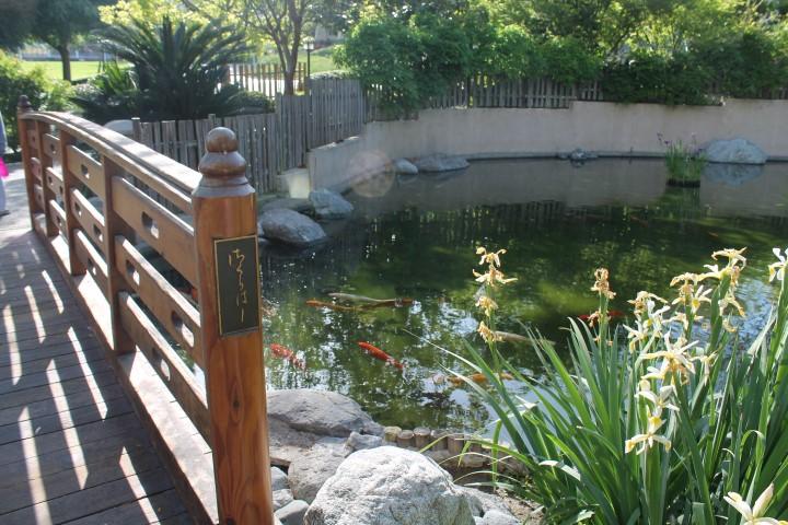 japanese-garden6.JPG