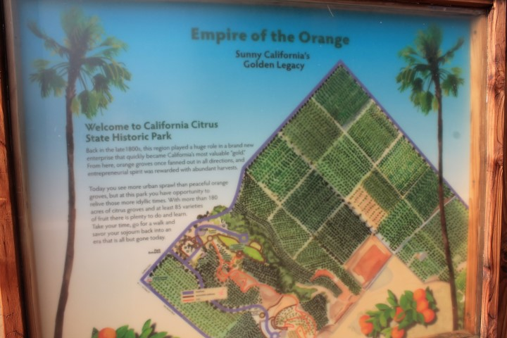 california-citrus-park-02.JPG