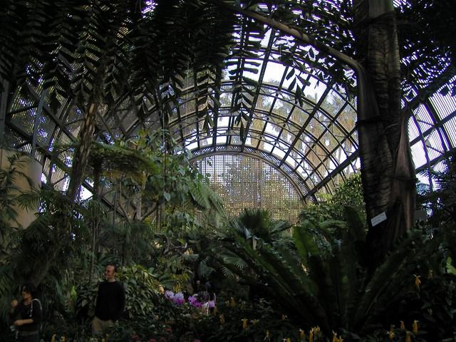 botanic_building-06.jpg