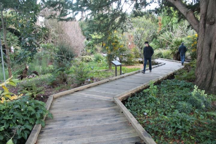 san-francisco-botanic-garden2.JPG
