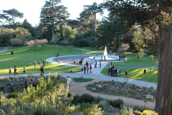 san-francisco-botanic-garden4.JPG