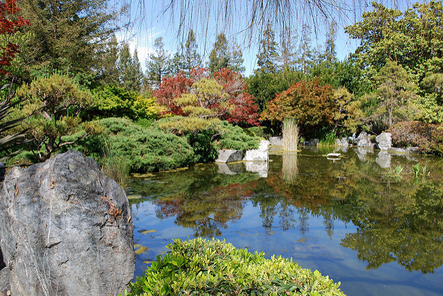 Japanese-Friendship-Garden.jpg