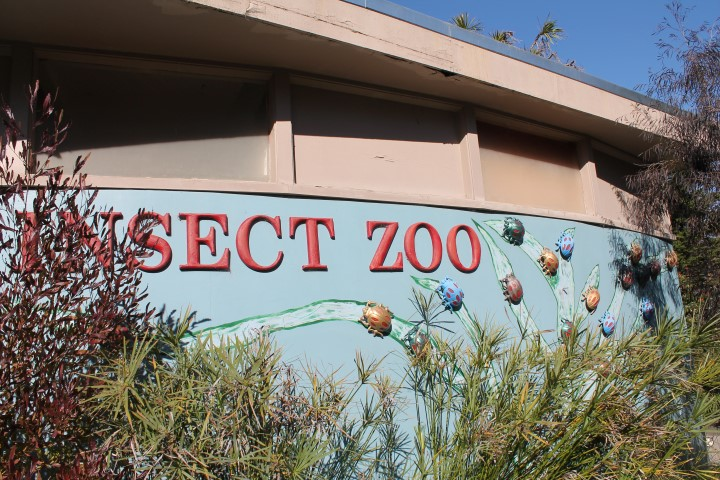San-Francisco-Zoo10.JPG