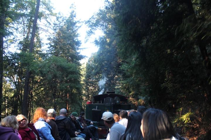 roaring-camp7.JPG