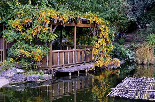 Hakone-Gardens.jpg