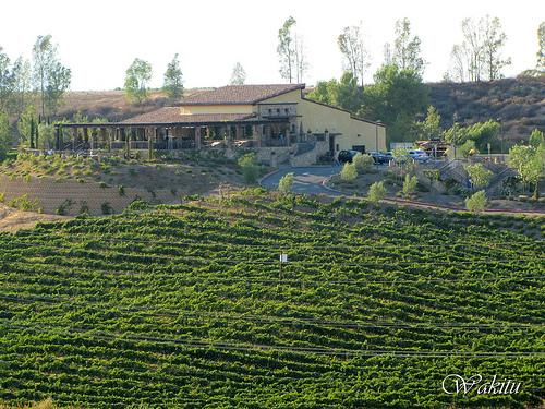 Miramonte-Winery.jpg