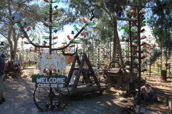 Bottle-Tree-Ranche01.JPG